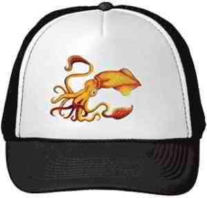 Amazon.ca: squid hat