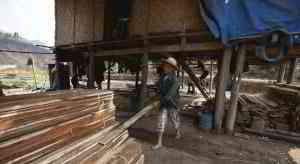 全球木材量
